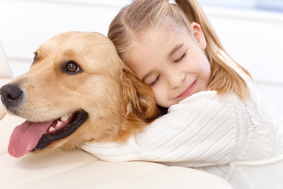 dog-pet