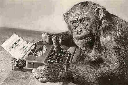 monkeytypist