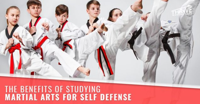 The-Benefits-of-Studying-Martial-Arts-for-Self-Defense-copy-5b7b38c945968-1200x626