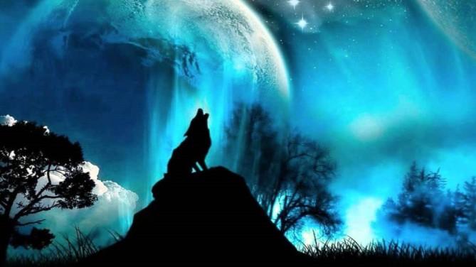night_wolf