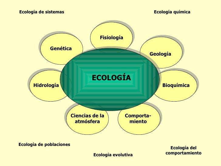 ecologia-3-728